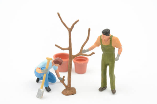 木に水をあげるミニチュア